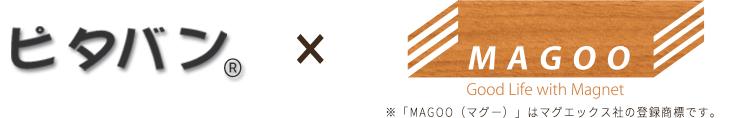 ピタバン×マグー※「MAGOO(マグー)」はマグエックス社の登録商標です。